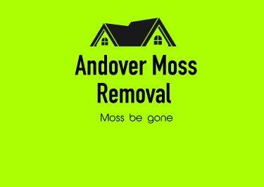 Andover-Moss-Removal-LS-Logo.jpg