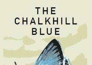 Chalkhill-Blue.jpg