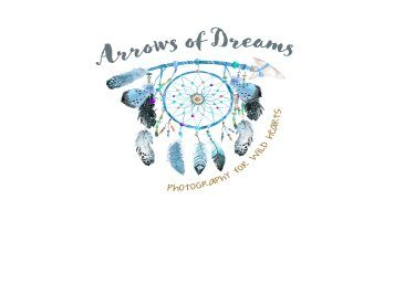 use-Arrows-of-Dreams-LS-Logo.jpg